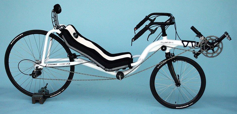 Catbike Musashi: 10,000km (dix-mille, oui) Http-bicyclepaten...010-09-1-2c29115