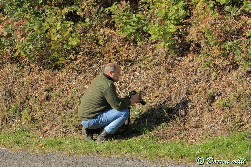 promenade sur les fagnes et alentours ( jalhay ) le 16-oct-2011 Dpp_jalhay---16-o...1---0026-2dd6f4d