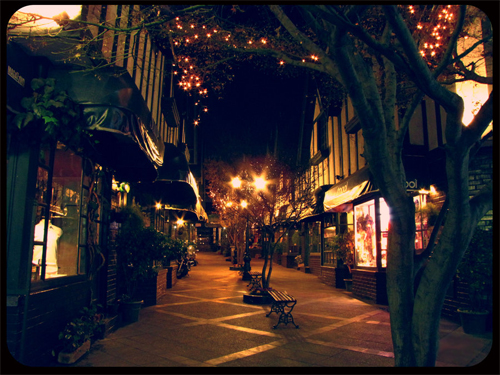 La rue commerçante Rue-commer-ante1-2c33293